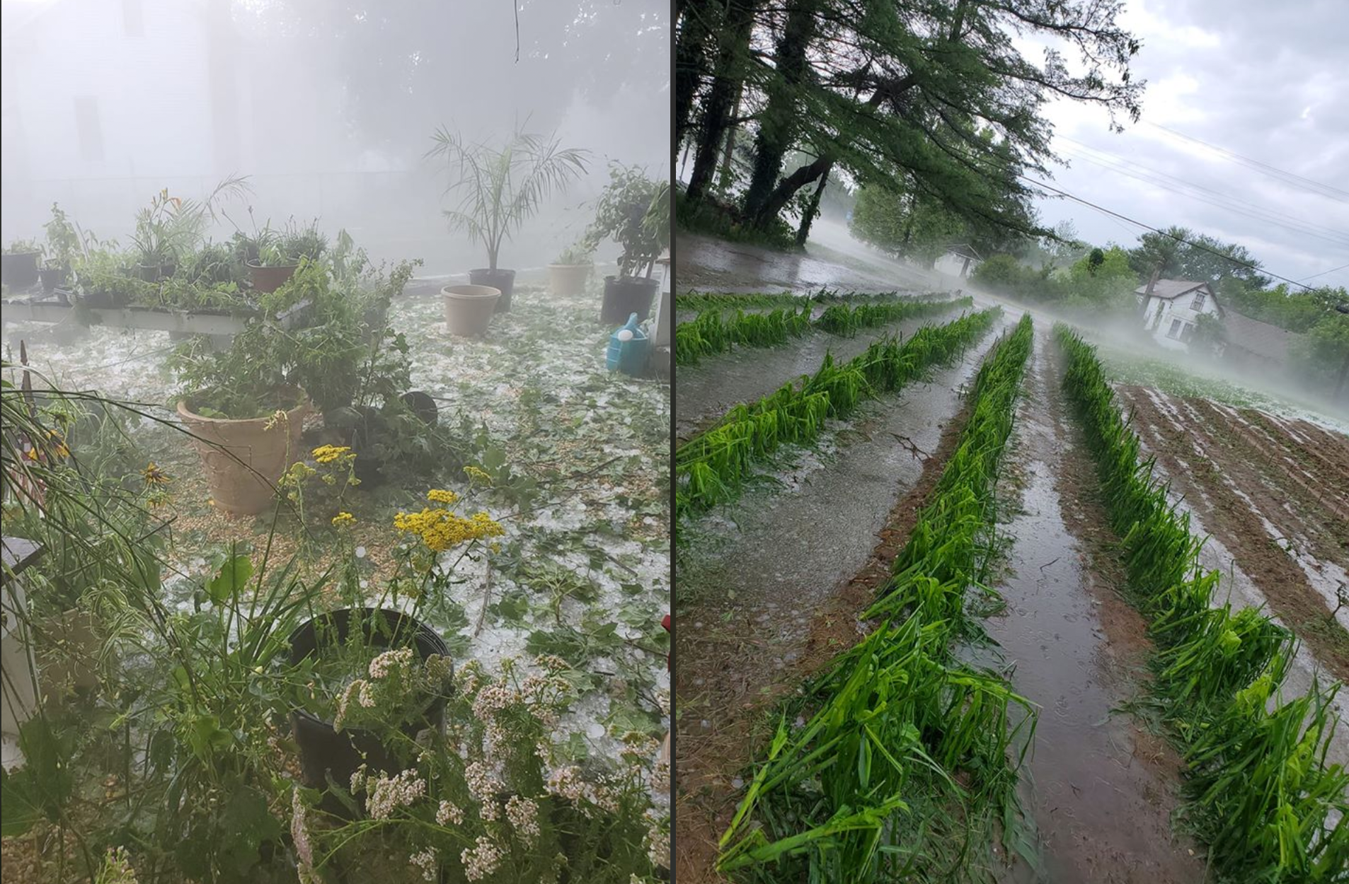 Upper Township hail on July 1st